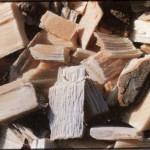 Burglengenfeld Biomasse Energiekonzept, Bild 2